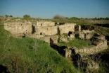 Villae Freiria (romano)