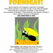 O Mundo das Formigas Sábado, 3 de Dezembro 10:00 – 12:30