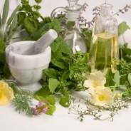 Farmácia da Natureza – Módulo 2 Sábado, 14 de Janeiro das 14:00 – 17:30