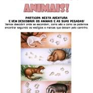 À procura das pegadas dos animais, 28 de Abril das 15:00 – 17:30