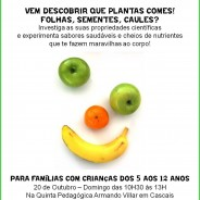 Que partes das plantas comemos? Domingo 20 de Outubro das 10:30 às 13:00