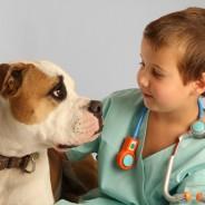 Vem ser veterinário por um dia!; Domingo 15 de Março das 10:30 às 12:30