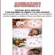 À procura das pegadas dos animais; Domingo 26 de Outubro da 10:30 às 12:30