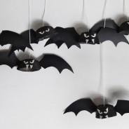 Mundo dos Morcegos – Mitos e Curiosidades; Sábado, 25 de Fevereiro das 15:00 – 16:00